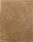 Shower Wall Tile Selection